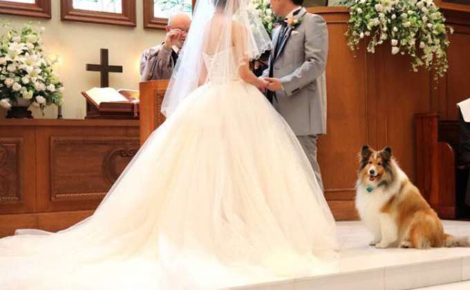 結婚式の画像